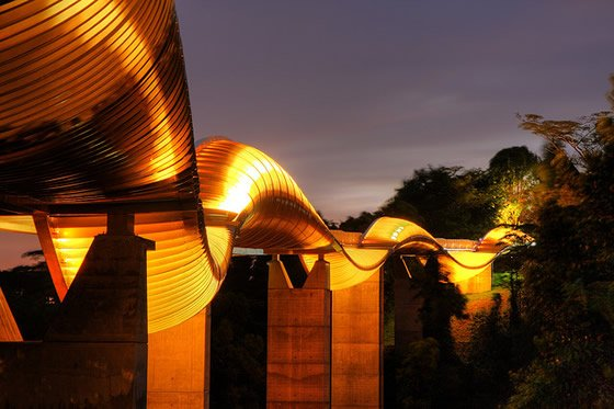 henderson waves bridge 2 %Category Photo