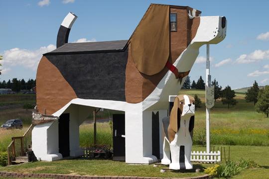 Собаки лают Парк ИНН - корм для собак или гостинице Бигль