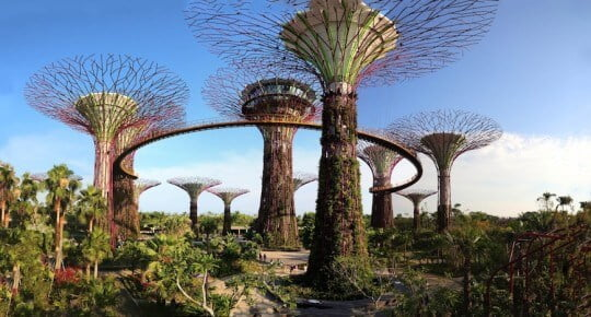 Gardens by the Bay – An Avatar World in Singapore - World Top Top
