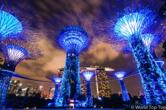 Garden By The Bay Night gardensthe bay – an avatar world in singapore - world top top